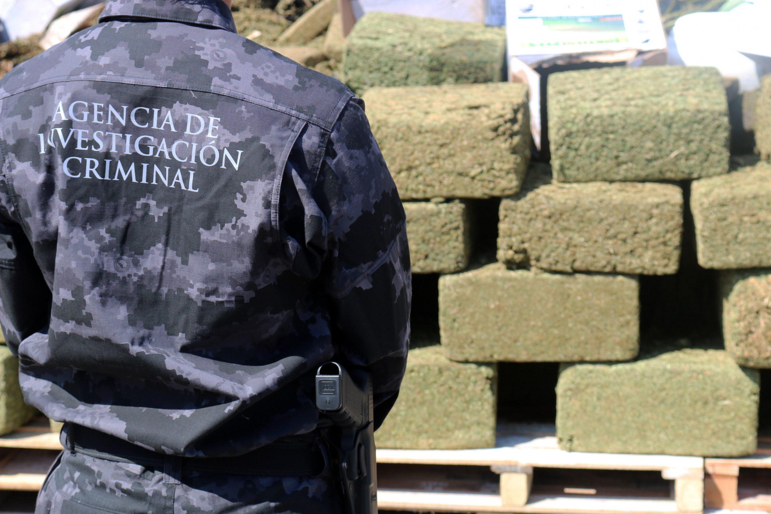 Photo of Incinera PGR en Jalisco más de 5 toneladas de drogas