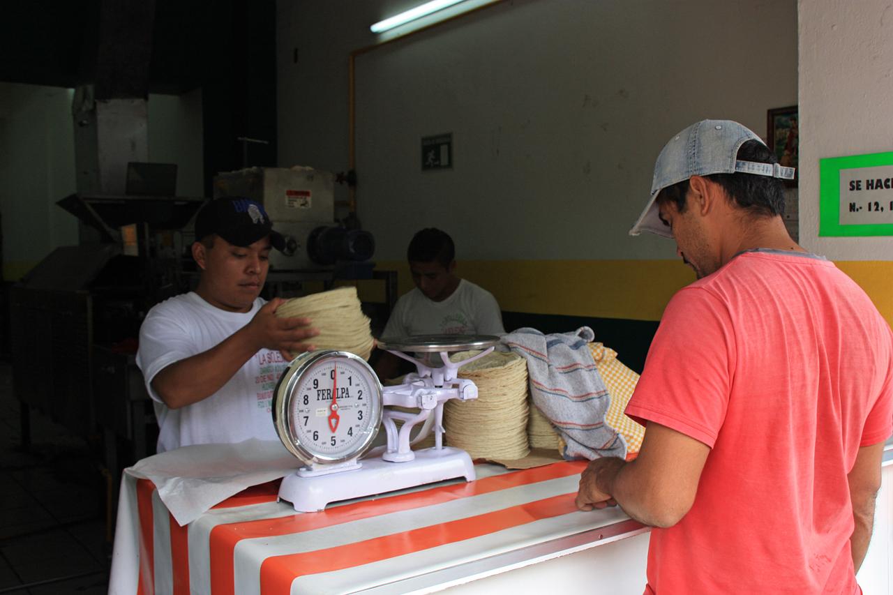 Photo of Intensifica Profeco vigilancia a tortillerías a nivel nacional