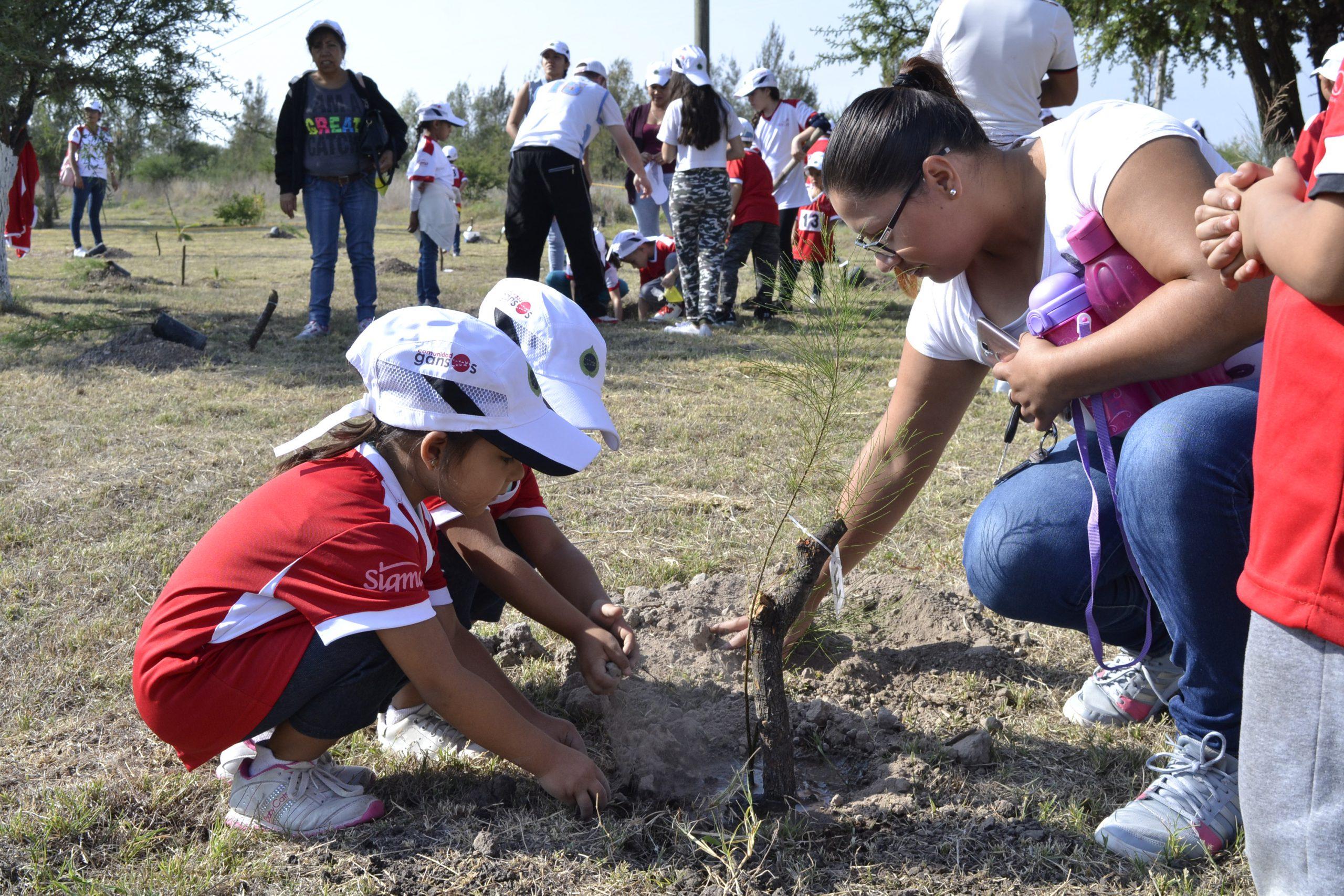 Photo of Se llevó a cabo la Primer Jornada de Reforestación en Monte Alto