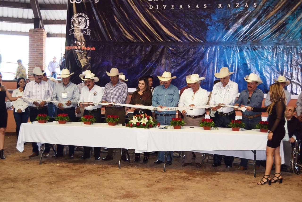 Photo of Inauguran XXXVI Exposición Ganadera en Fiestas de Agosto 2018