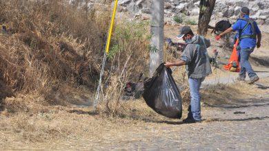 Photo of Brigadas de limpieza realizan trabajos en la ciudad
